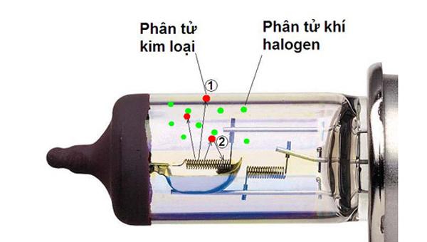 nguyên lý hoạt động đèn halogen