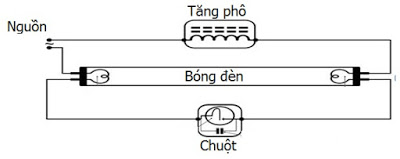 Nguyên lý hoạt động của bóng đèn led tube